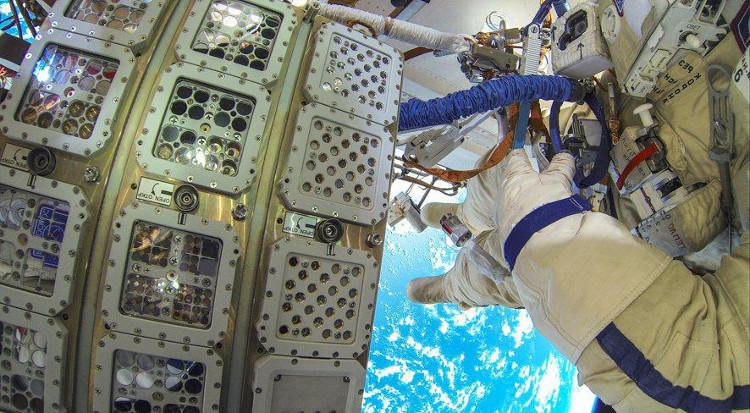Thí nghiệm trong dự án BIOMEX, đưa sinh vật sống ra ngoài không gian.