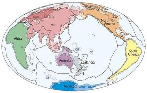 Bản đồ đơn giản của các mảng kiến tạo và lục địa của Trái Đất, bao gồm cả Zealandia.