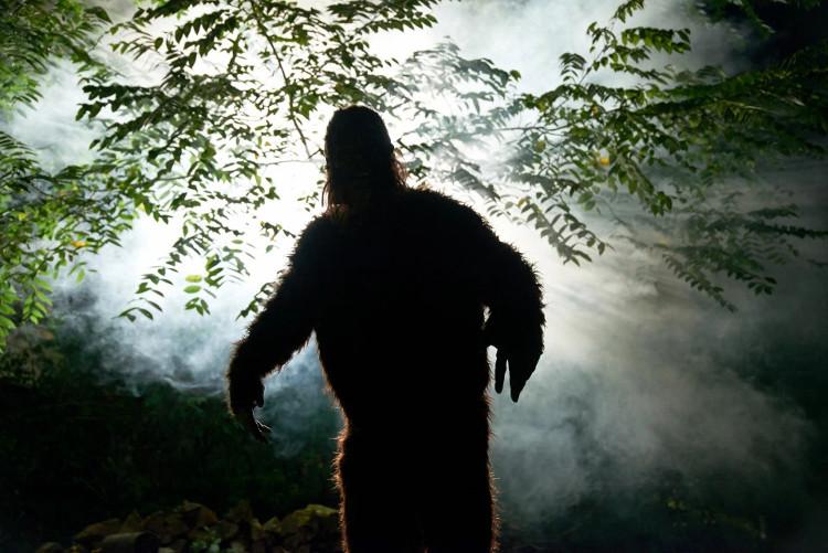 Từ hàng nhiều thế kỷ qua, người dân trên thế giới, đặc biệt là Mỹ, đã nhiều lần kể lại những phát hiện của họ về Bigfoot