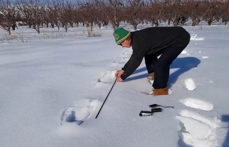 Paul Graves đo dấu chân bí ẩn trên tuyết.