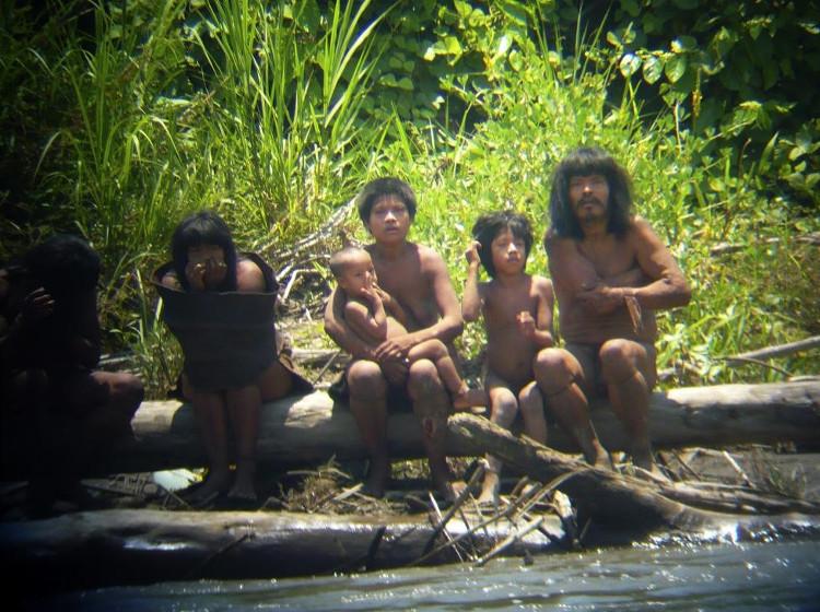 Thành viên bộ tộc Mashco-Piro quan sát du khách từ bờ sông Alto Madre de Dios