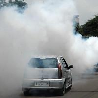 Con người đang đang bị mất khứu giác vì ô nhiễm