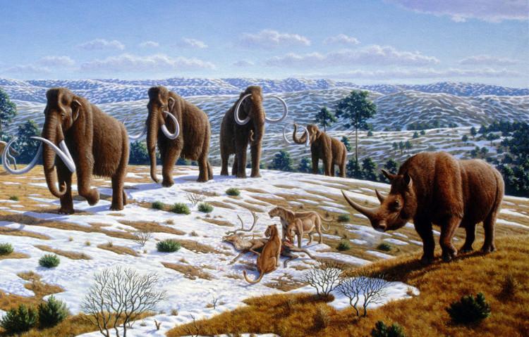 Cứ 40.000-100.000 năm trái đất có thể rơi vào thời kỳ băng hà một lần, có thể hủy diệt các loài.