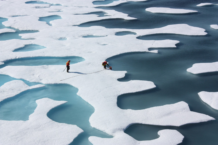 Biển băng Bắc Cực đang sụt giảm về diện tích.