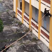 Giáo sư Mỹ lý giải kỹ thuật leo tường bằng sào tre của đặc nhiệm Việt Nam