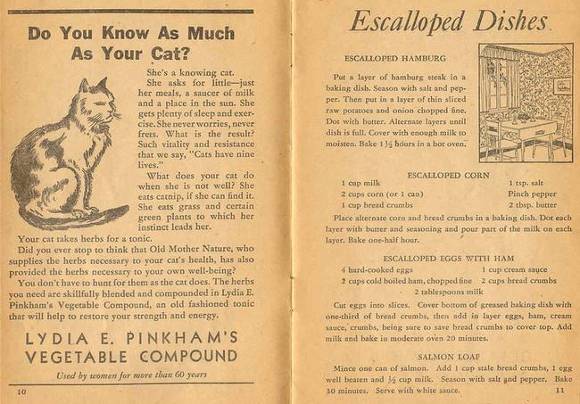 Một trang từ Tập sách Công thức của Lydia Pinkham minh họa một số chiến lược tiếp thị khác của công ty.