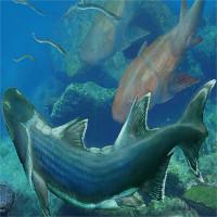 Hóa thạch cá bọc thép 420 triệu tuổi ở Trung Quốc