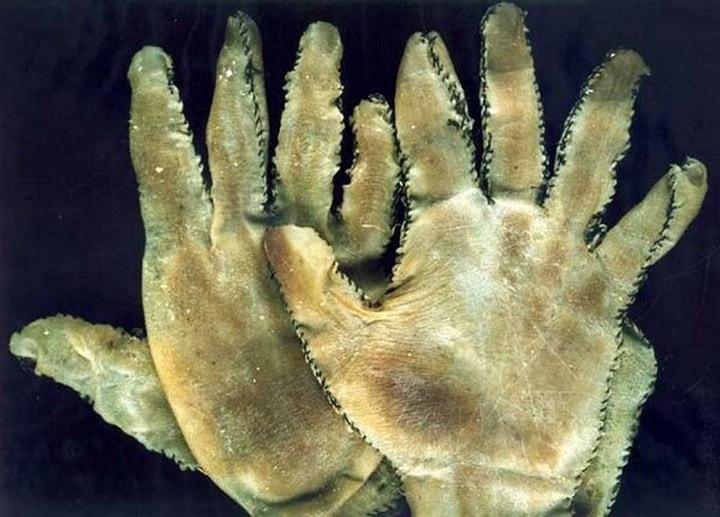 Đây là đôi găng tay làm từ da người, một trong những đôi găng tay ảnh nhất thế giới. (Nguồn Brilio).