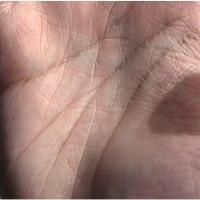 Video: Nguồn gốc đường chỉ tay của con người