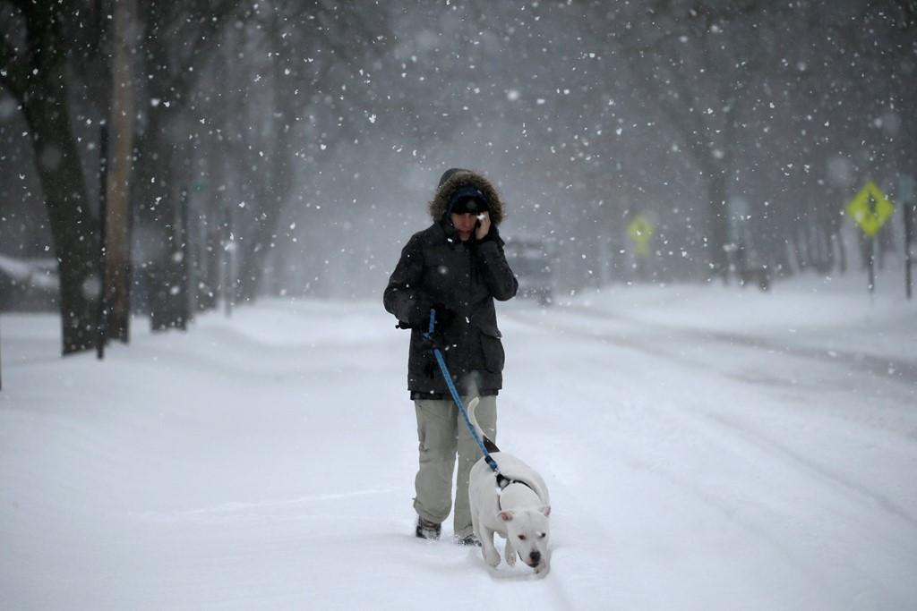 Một phụ nữ đi dạo cùng chó tại New York.
