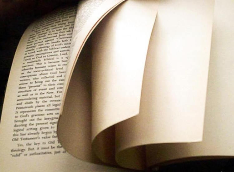 Những trang giấy trắng trong sách là lỗi in ấn chứ không phải để trang trí đâu nhé.