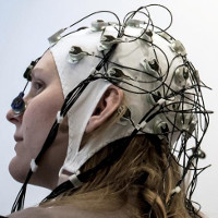 Đã có thể tải kiến thức vào não người?