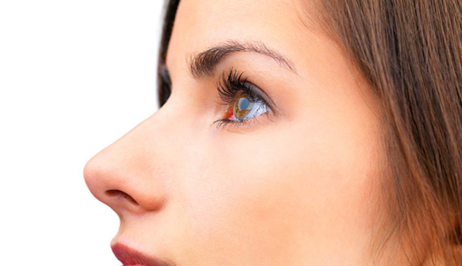 Hình dáng mũi của con người hình thành dựa trên từng loại điều kiện khí hậu nhất định.