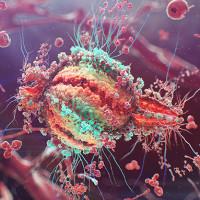 """Đã có thể phát hiện tế bào T nhiễm HIV đang """"ngủ đông"""", mở ra hy vọng trị tận gốc"""