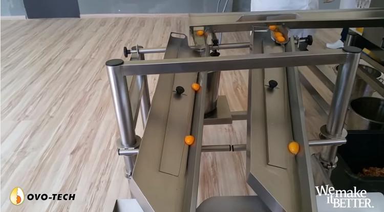 Cỗ máy tách trứng RZ-6.