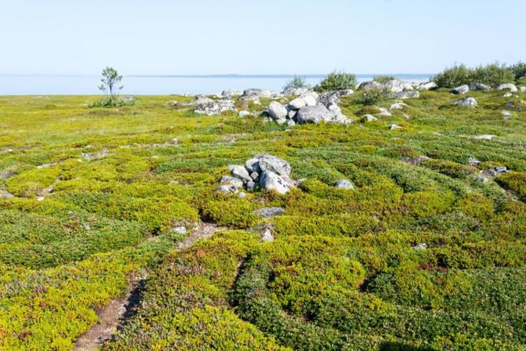 Mê cung đá ở đảo Bolshoi Zayatsky là một điểm đến thú vị ở Nga.