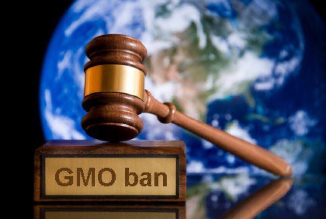 """""""Ai làm chủ hạt giống sẽ làm chủ thực phẩm, ai làm chủ đuợc thực phẩm sẽ làm chủ thế giới""""."""
