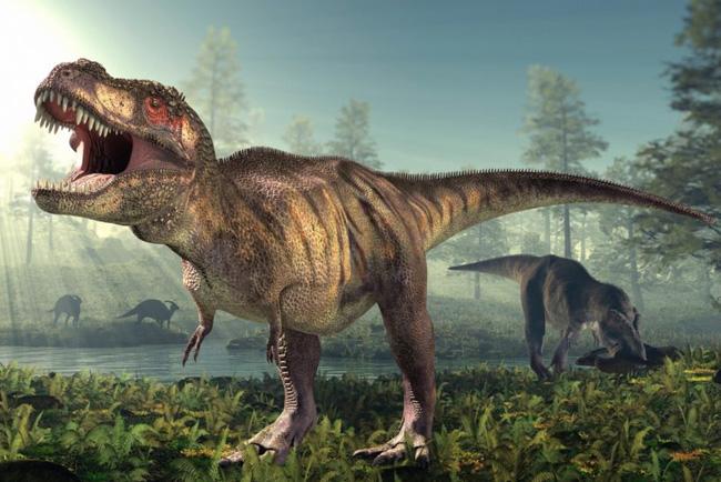 T-rex có một cái mũi cực kỳ nhạy cảm