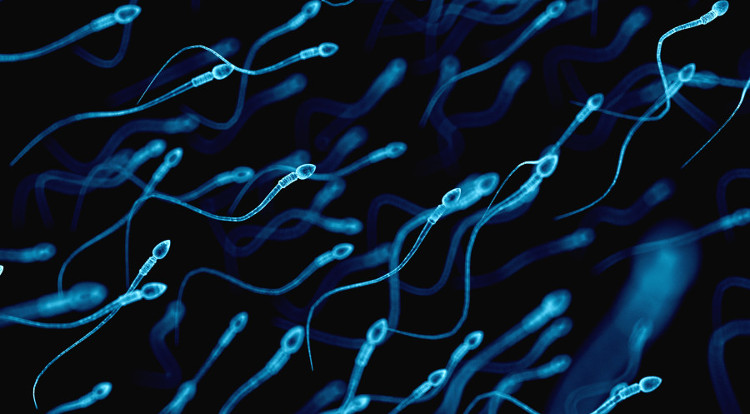 Nam giới chịu sử dụng biện pháp tránh thai này sẽ thay đổi cuộc sống của rất nhiều phụ nữ ở các nước đang phát triển