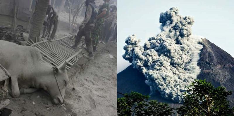 Núi lửa Merapi là một trong những núi lửa hoạt động mạnh nhất ở Indonesia.