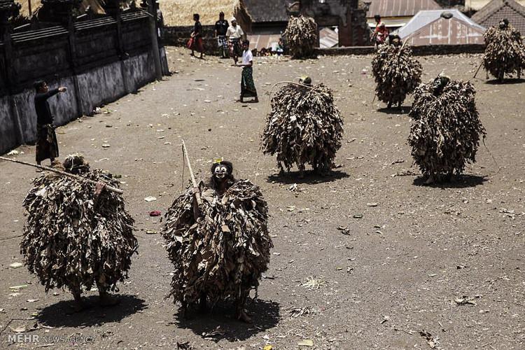 Thanh niên sẽ quấn lá chuối khô lên người, chạy quanh đền để tôn vinh linh vật truyền thống là sư tử Barong.