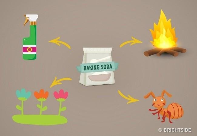 """Baking soda là một chất """"đa năng""""."""