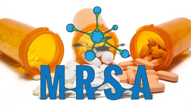 Các nhà khoa học hi vọng các thể lai sẽ giúp diệt trừ siêu vi khuẩn MRSA.