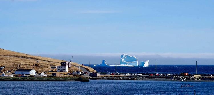Thị trấn nhỏ Ferryland cứ đến mùa xuân lại có nhiều du khách đến chỉ để chụp hình với những tảng băng