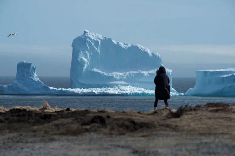 Một du khách đang chụp hình các tảng băng ngoài xa.