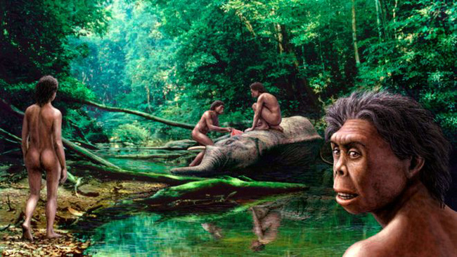Các nhà khoa học người Úc mới đây cho rằng người Hobbit có liên quan đến chủng người Homo habilis