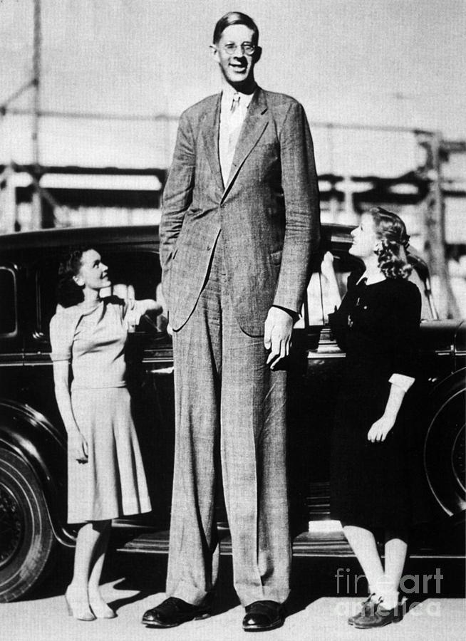 Người đàn ông cao nhất mọi thời đại