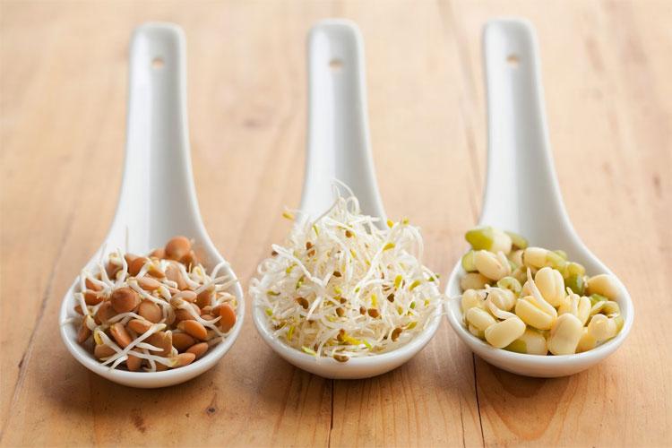 Protein có trong các loại đậu, hạt hoặc ngũ cốc rất nhiều và càng nhiều hơn khi chúng này mầm.