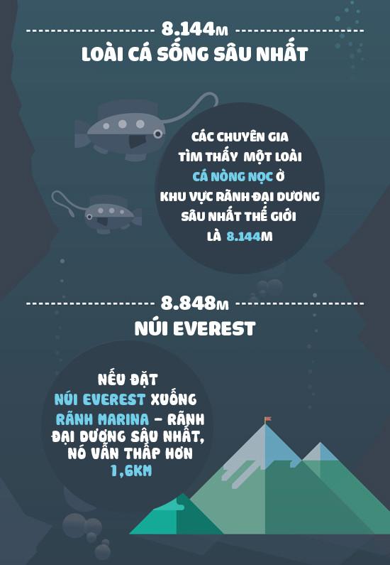 Loài cá sống sâu nhất