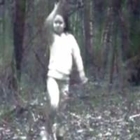 """Thợ săn tung ảnh """"hồn ma bé gái không chân"""" dạo chơi giữa rừng"""