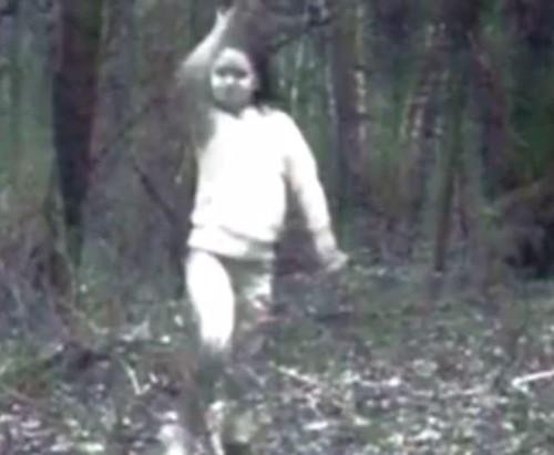 Bức ảnh cô bé mặc đồ trắng giữa rừng.