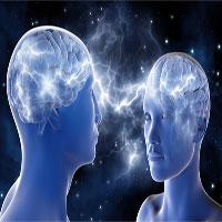 Bạn có tin bộ não của nam giới thực sự lớn hơn nữ giới?