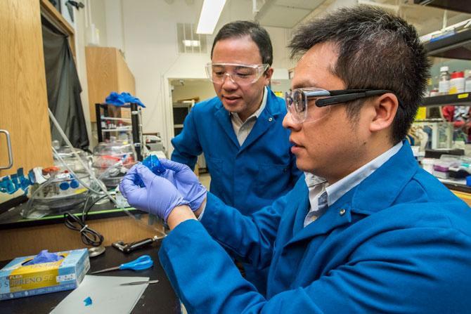 Hai nhà nghiên cứu, Cheng Gong và Xiang Zhang đang cầm trên tay vật liệu CGT.