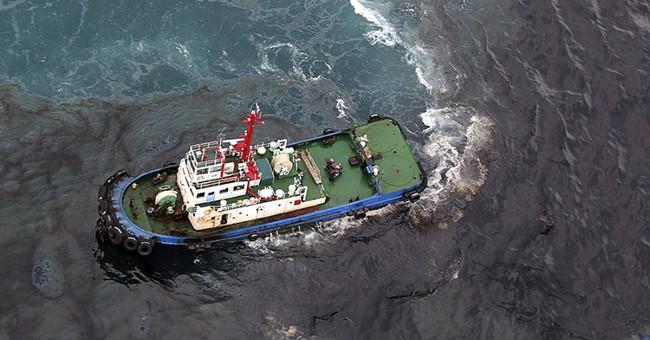 Thủy triều đen là gì? Nguyên nhân và cách khắc phục thủy triều đen