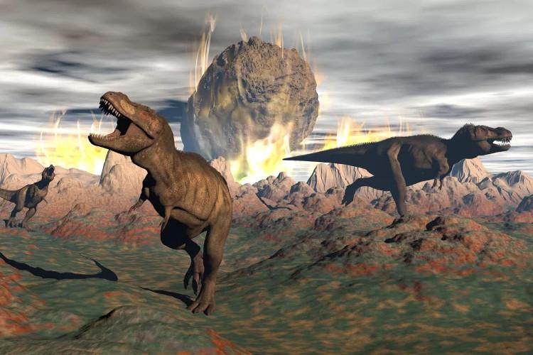 Thiên thạch Chicxulub đã gián tiếp giết chết khủng long.