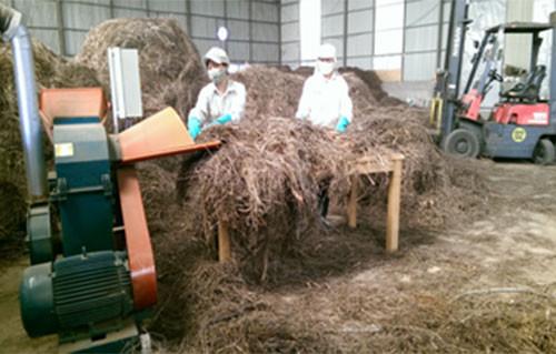 Xử lý bã sả sau chưng cất làm nguyên liệu sản xuất phân hữu cơ vi sinh.