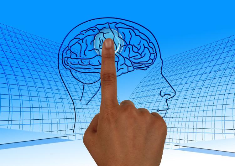 Người là con một và người có anh chị em có sự khác nhau về khối lượng chất xám trong não.