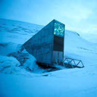 Hầm chứa hạt giống chống tận thế ngập nước do băng tan