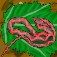 Hóa thạch rắn có cánh 5 triệu năm tuổi