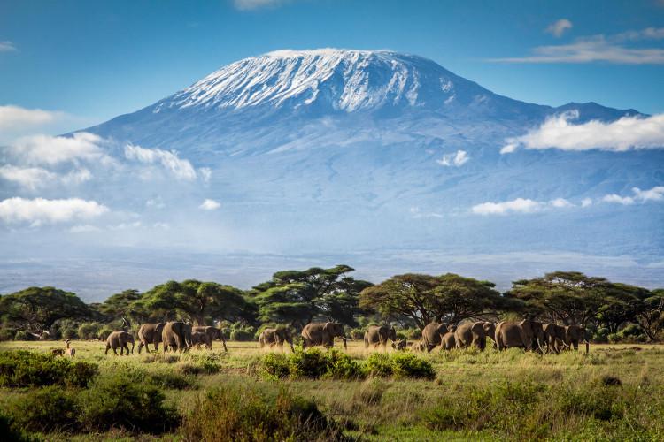 Núi Kilimanjaro là điểm cao nhất ở châu Phi và được bao phủ bởi lớp tuyết dày.