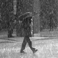 Video: Bí quyết dự đoán thời điểm cơn mưa ập tới