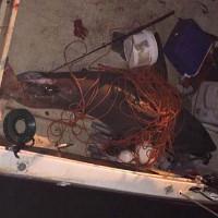 Cá mập trắng 2 tạ phi thân lên thuyền ngư dân
