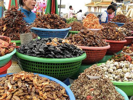 Một số loại côn trùng được xem như món ăn đặc sản.