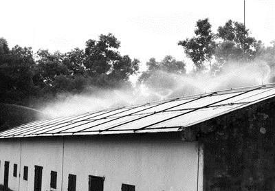 Bạn có thể dùng hệ thống phun nước làm mát mái nhà.