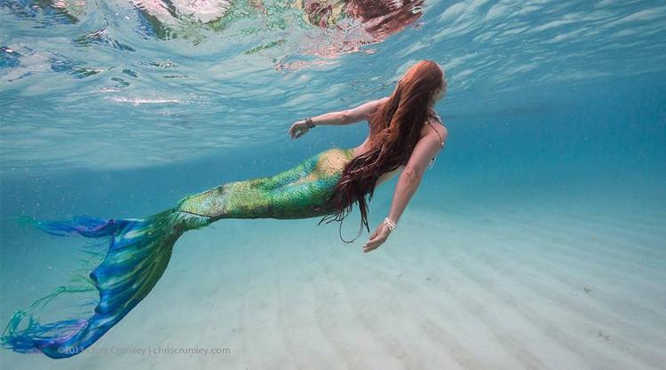 Truyền thuyết về nàng tiên cá rất phổ biến trong nhiều nền văn hóa trên thế giới.