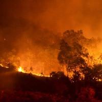 Tin mới vụ cháy rừng Sóc Sơn, Hà Nội lớn nhất lịch sử